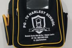 TK Harlest School